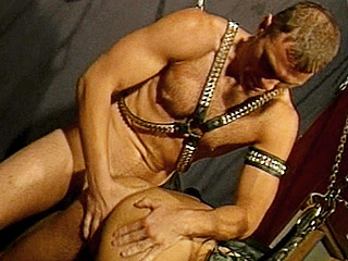 Gay Mature Men : gay hairy guy Ass Drilling!