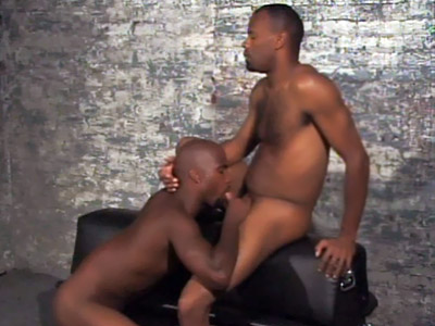 Gay Ebony Studs : Black Gays Having Oral xxx!