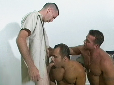 Gay Bears Hairy : Raunchy homosex bear Threesome!