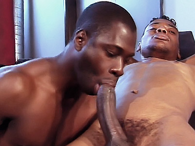 Gym Gay Sex. Muscled black gays Koby Bird and Ricky Parker flex their ...
