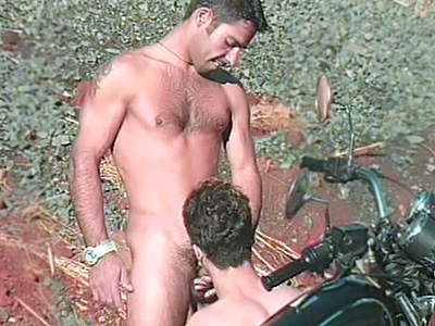 Gay Bears Hairy : Hairy Gays Outdoor Sex!